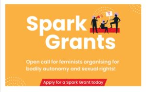 Read more about the article The SheDecides Spark Grants – US$5-20k in Funding
